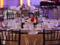 Paws-and-Claws-Gala_007